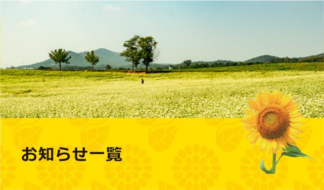 北九州小倉の韓国語教室 ひまわり韓国語教室の教室からのお知らせ
